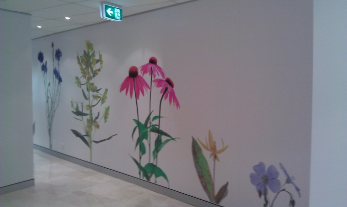 decorative-wall-graphics